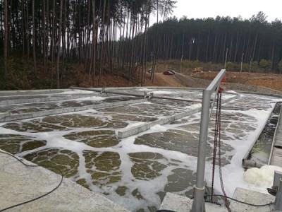 生物池曝气系统