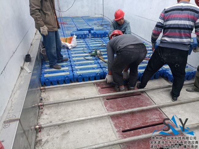 P80822 132301 650x488 - 帅一环保反硝化滤池气水分布系统(滤砖)安装现场照片